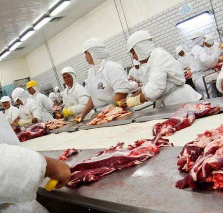 Demanda por carne bovina pode aquecer neste 2° semestre, diz Safras & Mercado